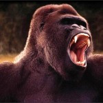 Gorillas in Product Cost Management Hiller Associates